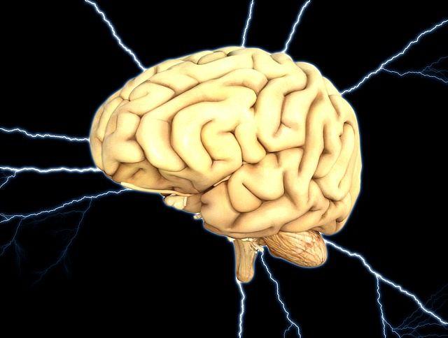 Kaj potrebujejo naši možgani za učenje?